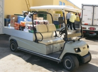 Electric Powered Utility Vehicle