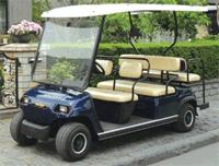 6 Seater Electric Multi Passenger